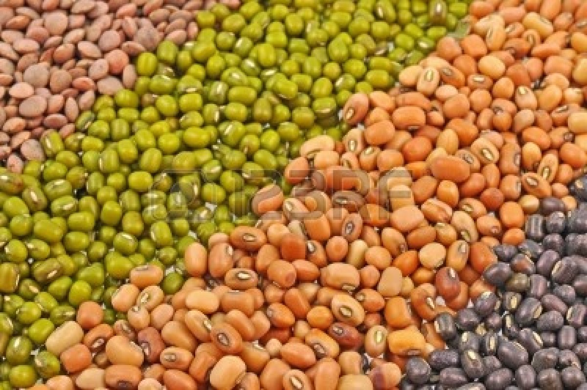16877348-close-up-of-seeds-of-pulses-arranged-in-oblique-manner